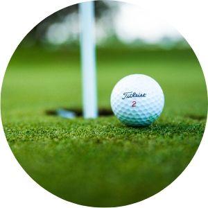 Close Up of Titleist Golf Ball Next to a Hole
