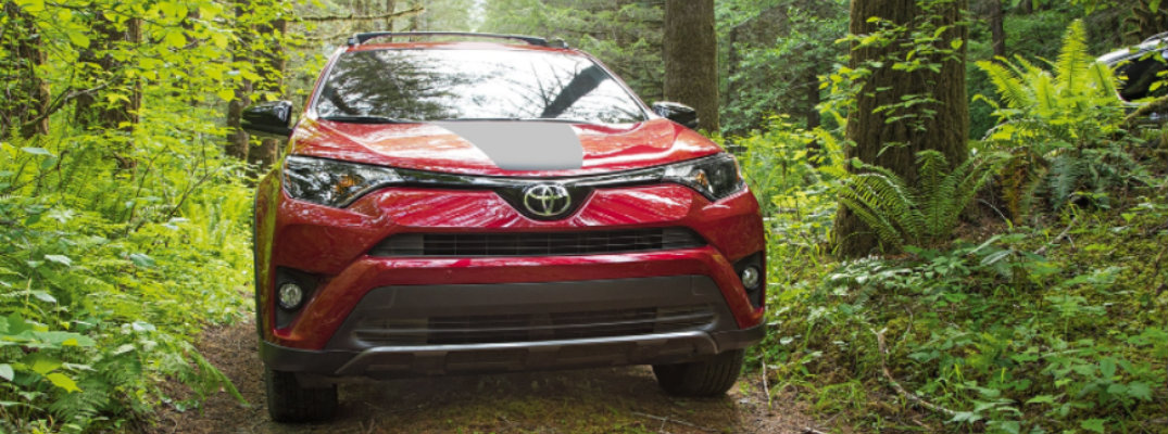 Front shot of 2018 Toyota RAV4 Adventure driving through tree-lined trail