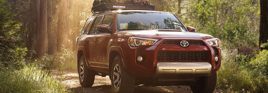 2019 Toyota 4Runner driving through the woods
