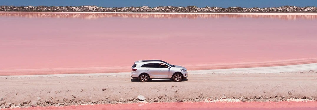 2019 Kia Sorento silver side view surrounded by pink water