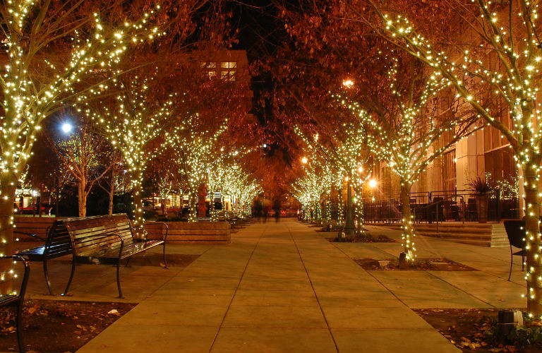 sidewalk in the city lined with trees adorned with Christmas lights