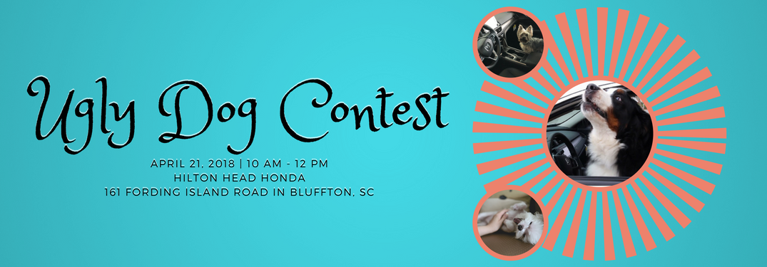 """dog photos over an orange sunburst pattern with text that says """"Ugly Dog Contest April 21, 2018 10 am - 12 pm Hilton Head Honda 161 Ford Island Road in Bluffton, SC"""" all over a sky blue background"""