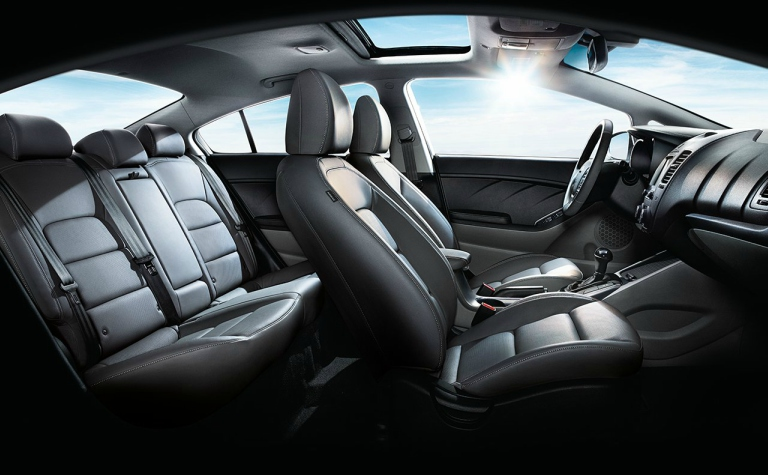 2018 Kia Forte seating side view