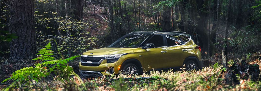 What are the 2021 Kia Seltos Available Color Options?