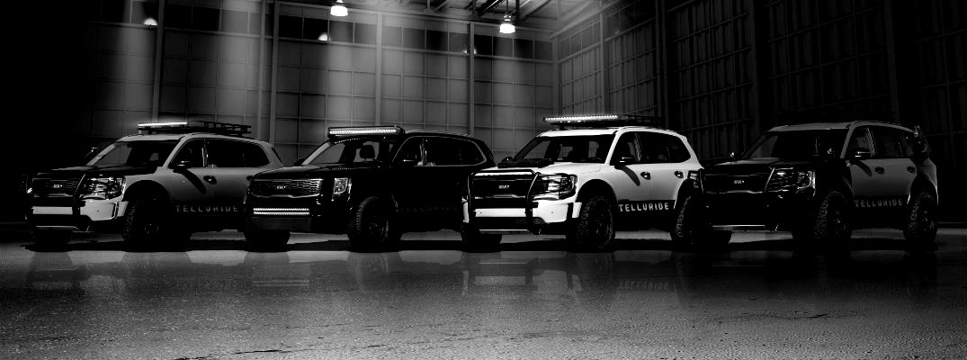 Line of 2020 Kia Telluride models in black and white