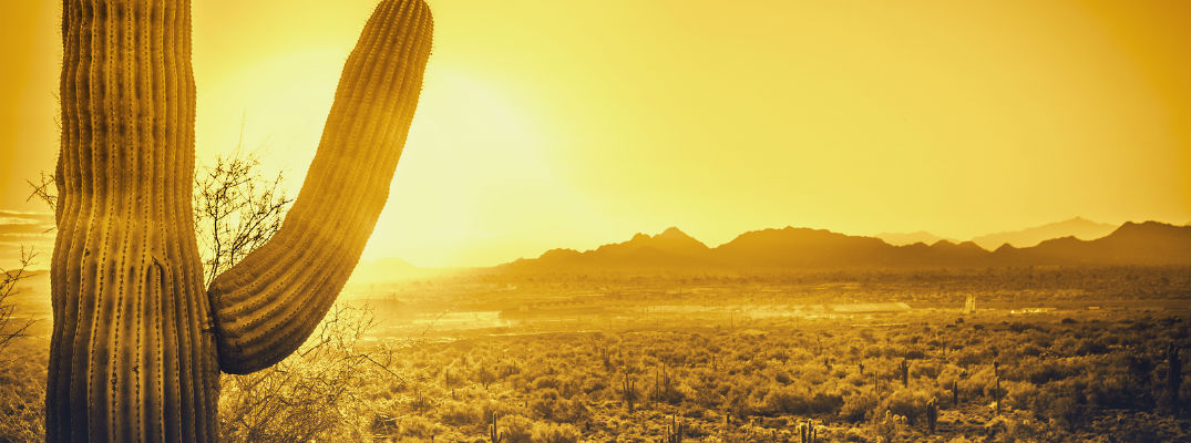 A stock photo of a desert scene that could be good for hiking.