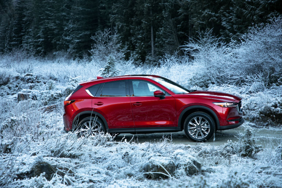 A right profile photo of the 2019 Mazda CX-5 in the woods.