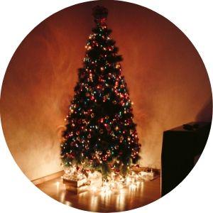 Lit Christmas Tree in the Dark