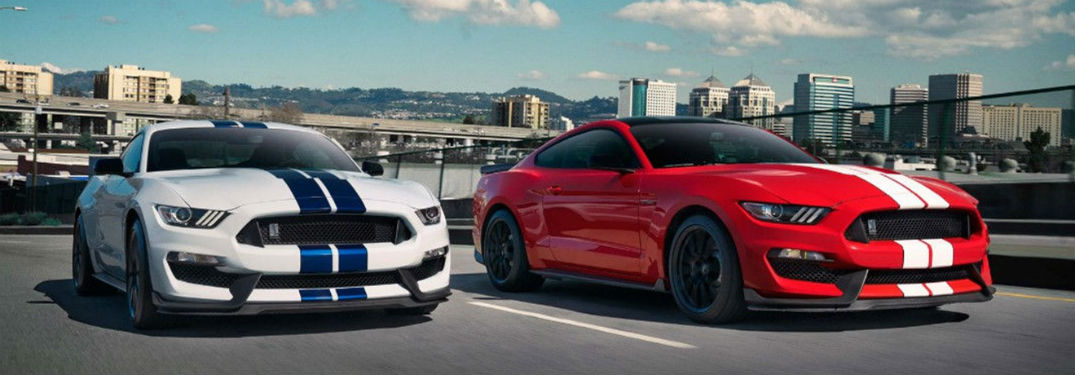 Front exterior view of 2 2018 Ford Mustang Shelby GT's