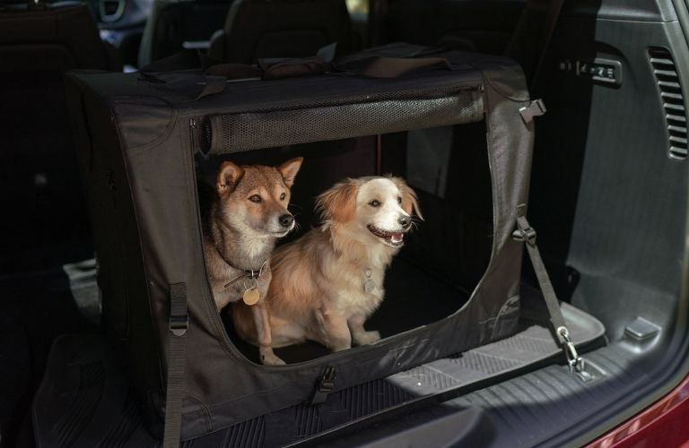 two dogs in a Mopar kennel in the back of the 2019 Chrysler Pacifica