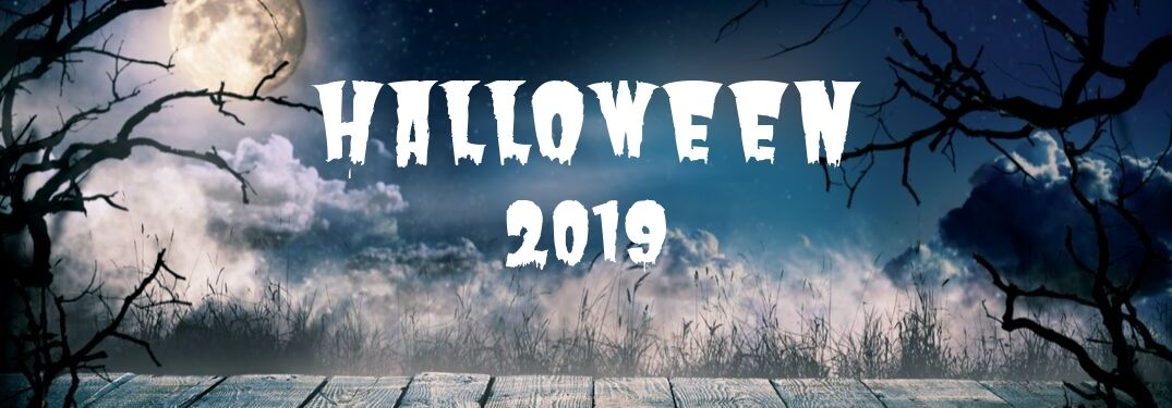 Halloween 2019 with a spooky night sky and trees in the background