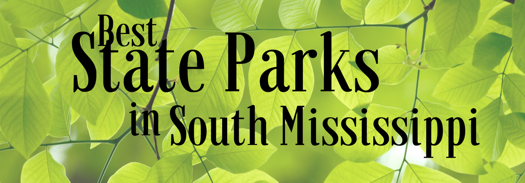 Best State Parks in South Mississippi on a leafy background