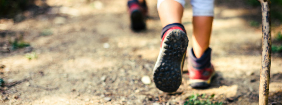 children hiking through the mountains on a dirt path with wood walking sticks