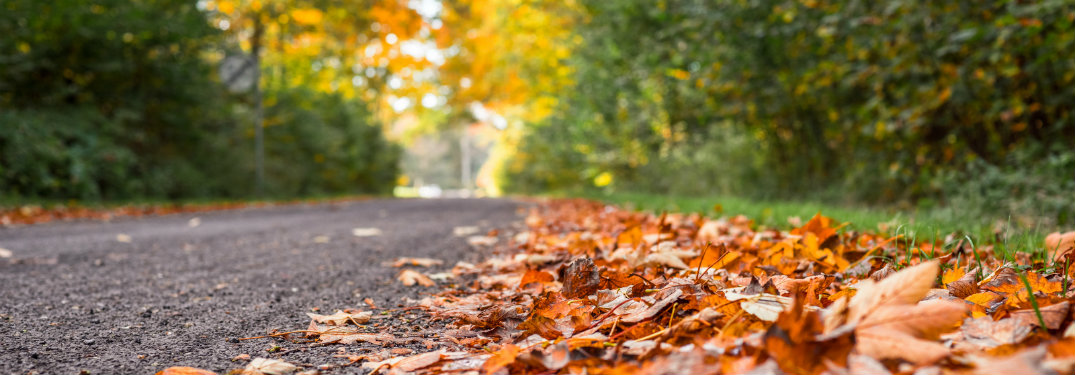 leaf and yard waste removal in akron oh